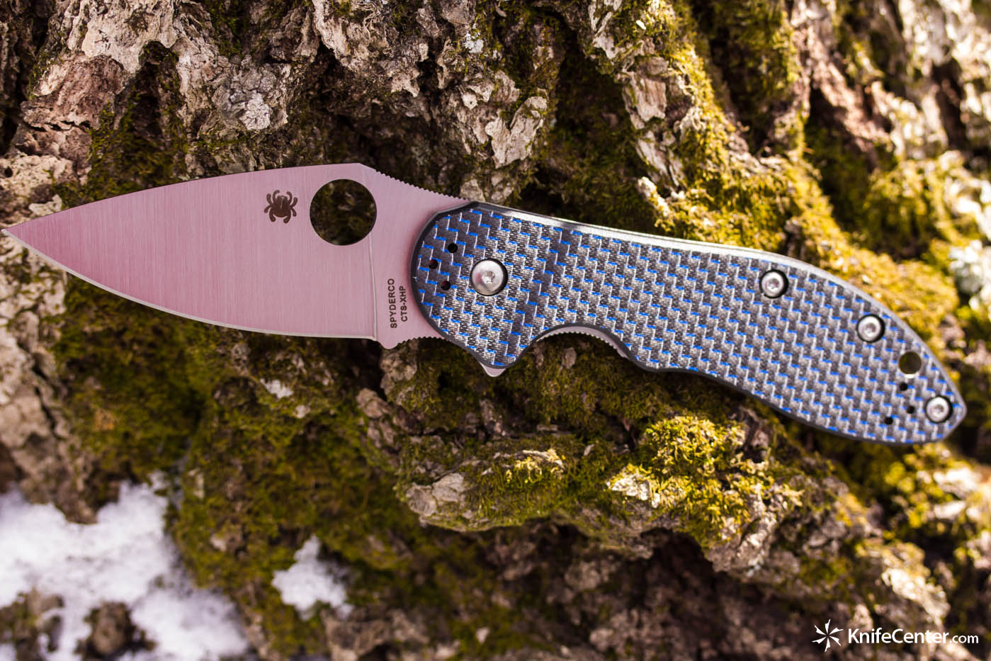 Spyderco C172CFBLTIP Domino Folding Knife